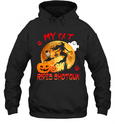 My Cat Rides Shotgun Funny Witch Cat Halloween Gifts Hoodie