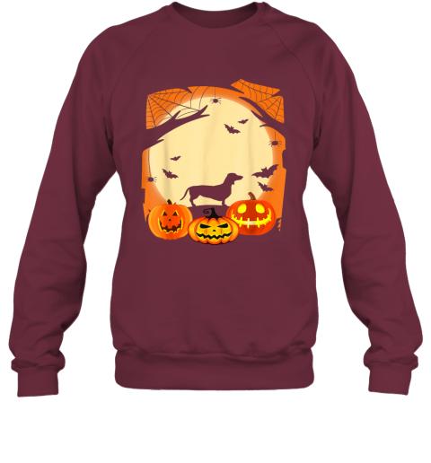 Dachshund Witch Funny Dog Halloween Gift Sweatshirt