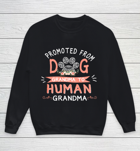 Promoted From Dog Grandma To Human Grandma Mother s Day Youth Sweatshirt