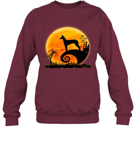 Ibizan Hound Dog Shirt And Moon Funny Halloween Costume Gift Sweatshirt