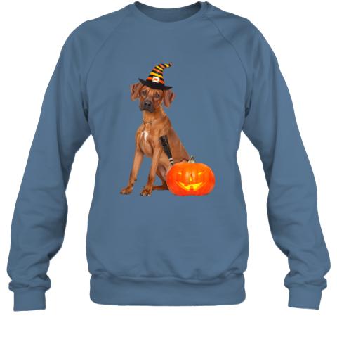 Rhodesian Ridgeback Witch Hat Halloween Dog Costume Sweatshirt