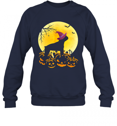 Funny Halloween Costume Boston Terrier Dog Lover Gift Sweatshirt