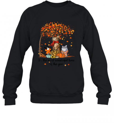 It's The Most Wonderful Time Of The Year Family Cats Autumn Sweatshirt