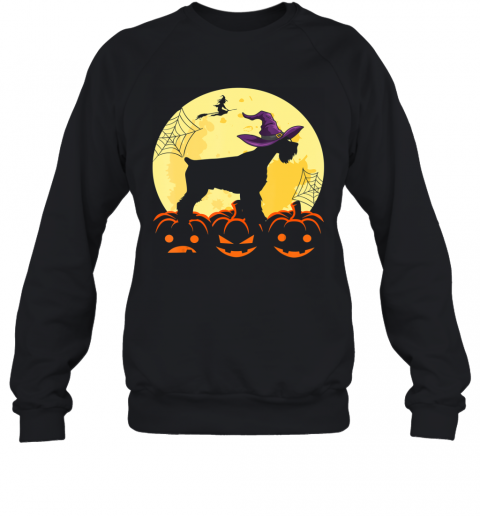 Cute Halloween Schnauzer Dogs Witch Pumpkin Gifts For Family Sweatshirt