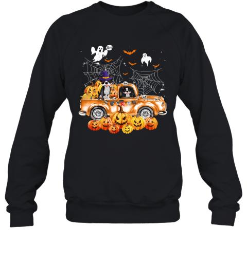 Boston Terrier Dog On Pumpkins Truck Autumn Halloween Gift Sweatshirt