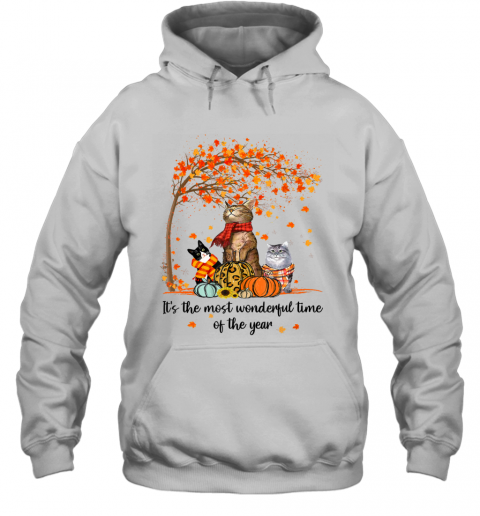 It's The Most Wonderful Time Of The Year Family Cats Autumn Hoodie