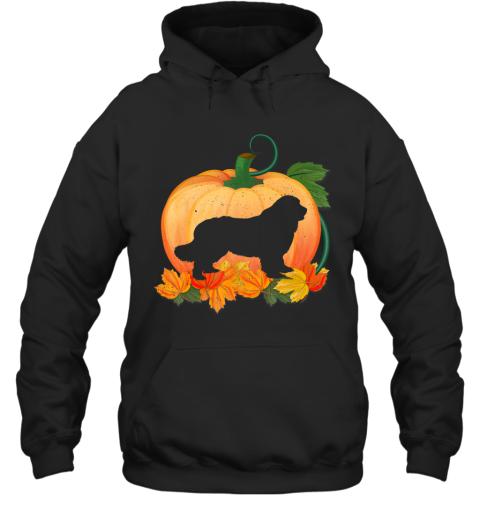 Cute Halloween Costume Dog Pumpkin Hoodie