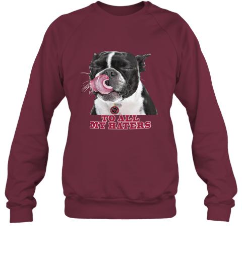 Arizona Cardinals To All My Haters Dog Licking Sweatshirt