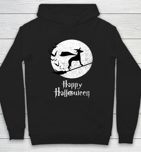 Funny Halloween Costume Witch WHIPPET Dog Lover Gift Hoodie