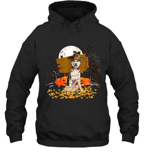 My Siberian Husky Pumpkins Halloween Dog Gift Hoodie