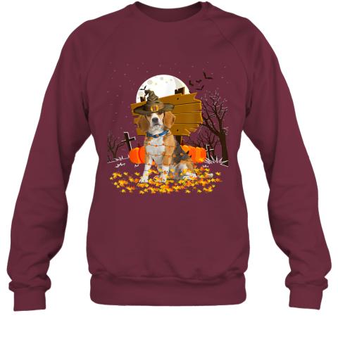 My Beagle Pumpkins Halloween Dog Gift Sweatshirt
