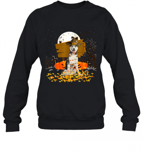 My Siberian Husky Pumpkins Halloween Dog Gift Sweatshirt