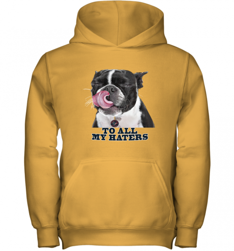 Houston Texans To All My Haters Dog Licking Youth Hoodie