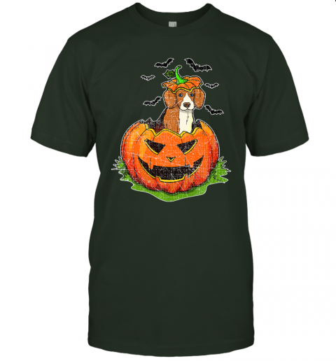 Cute Halloween Beagle Dog Lovers Pumpkin Jack O Lantern Kids Premium T-Shirt