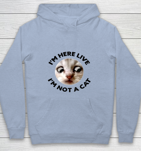 I m Here Live I m Not a Cat Zoom Cat Meme Humor Gifts Youth Hoodie 5