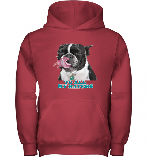 Miami Dolphins To All My Haters Dog Licking Youth Hoodie
