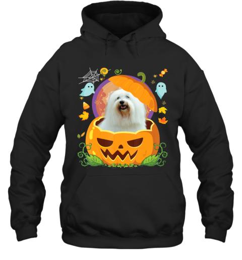 Happy Halloween Pumpkin Coton De Tulear Dog Witch Cute Hat Hoodie