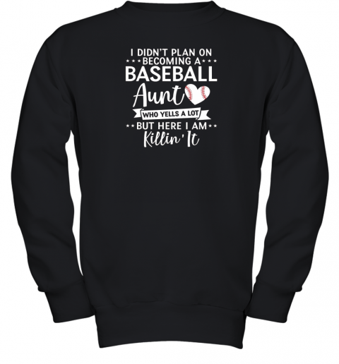 I Didn't Plan on Becoming a Baseball Aunt Gift Youth Sweatshirt