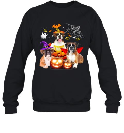 Three Boxer Dog Halloween Jack O Lantern Pumpkin Witch Sweatshirt